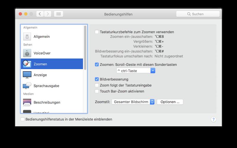 Das Fenster der Bedienungshilfen in den Einstellungen  von macOS Sierra